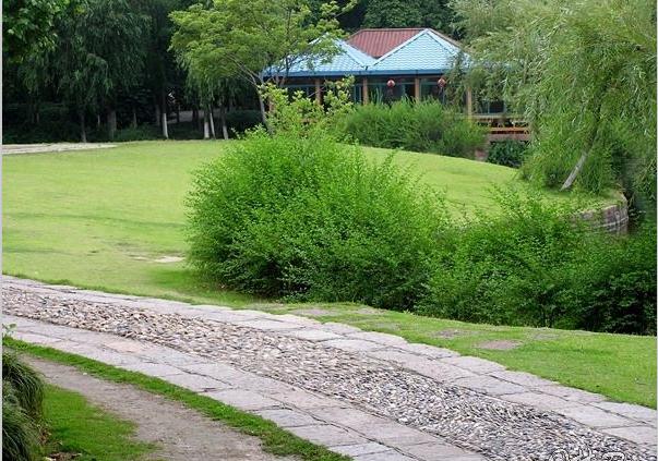 公园按规划设计意图,根据游览需要,组成一定范围的各种景观地段,形成